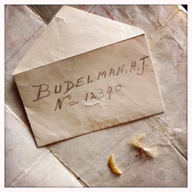 Jet Budelman