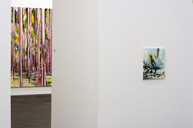 duisburg exhibition with paintings by david schnell at kueppersmuehle museum/Leo van der Kleij