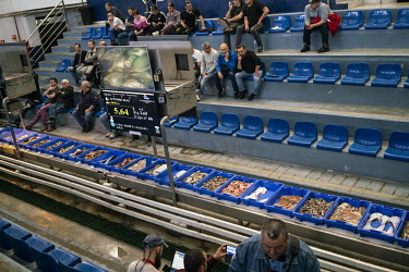 Spanje, Almeria, 16 april 2019 Visafslag in de haven van Almeria. Fish auction at the harbour of.../Jet Budelman